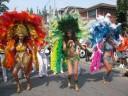 Samba on Dundas 1