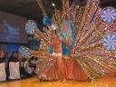 Brazilian Carnival Ball 2012 37