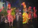 Carnaval Brasil 2013 Toronto 20
